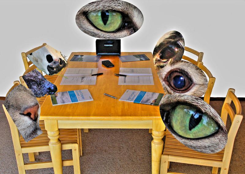 "torrbrae - All in Favour ... <a href=""http://torrbrae.smugmug.com/photos/newexif.mg?ImageID=1733717652&ImageKey=GqWmMxf"" target=""_blank""> EXIF</a> <a href=""http://torrbrae.smugmug.com/photos/newexif.mg?ImageID=1733717668&ImageKey=5mrGDPb"" target=""_blank""> EXIF</a> <a href=""http://torrbrae.smugmug.com/photos/newexif.mg?ImageID=1733717677&ImageKey=NnKkpW5"" target=""_blank""> EXIF</a> <a href=""http://torrbrae.smugmug.com/photos/newexif.mg?ImageID=1733717688&ImageKey=t2HdHkt"" target=""_blank""> EXIF</a> <a href=""http://torrbrae.smugmug.com/photos/newexif.mg?ImageID=1733717694&ImageKey=G7PcR2G"" target=""_blank""> EXIF</a> <a href=""http://torrbrae.smugmug.com/photos/newexif.mg?ImageID=1733717704&ImageKey=FxC8H4z"" target=""_blank""> EXIF</a>"