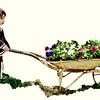 cambyses - Heading to the Garden