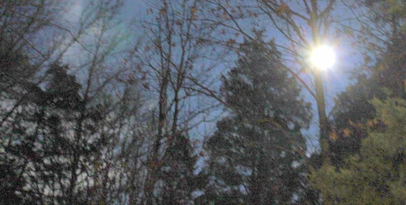 grandmaR - snow moon