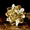 memol - Silver Rose