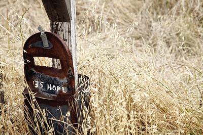 billseye - The Persistence of Hope