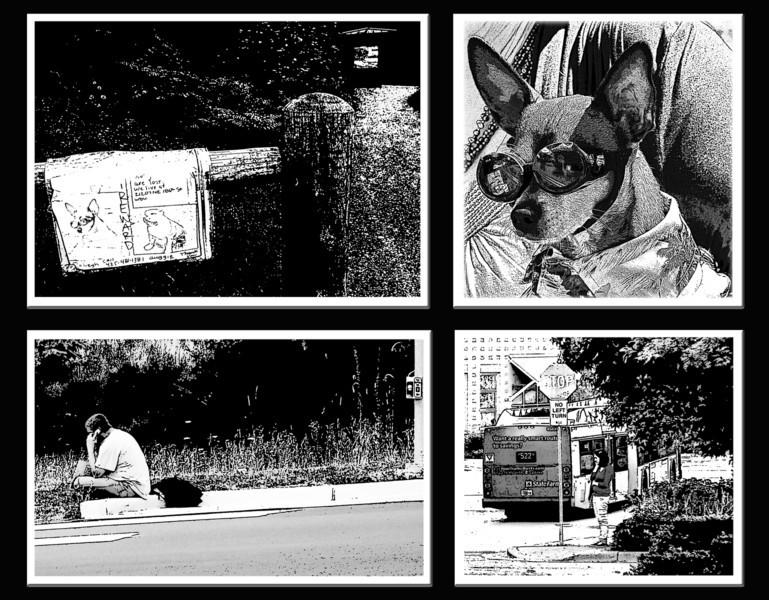 """WhatSheSaw - I Got Your Dawg <a href=""""http://www.seewhatshesaw.com/photos/newexif.mg?ImageID=1442095745&ImageKey=Lp8gw6K"""" target=""""_blank"""">EXIF 1</a> <a href=""""http://www.seewhatshesaw.com/photos/newexif.mg?ImageID=1442095393&ImageKey=cZzVnqP"""" target=""""_blank"""">EXIF 2</a> <a href=""""http://www.seewhatshesaw.com/photos/newexif.mg?ImageID=1442096003&ImageKey=DRV9g2P"""" target=""""_blank"""">EXIF 3</a> <a href=""""http://www.seewhatshesaw.com/photos/newexif.mg?ImageID=1442095955&ImageKey=gD878n6"""" target=""""_blank"""">EXIF 4</a>"""