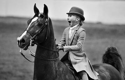 cmurph - In the Saddle