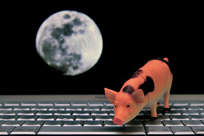 Benjer - Pigs in CyberSpace