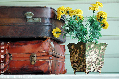 KevXman – The Travelin' Flowers