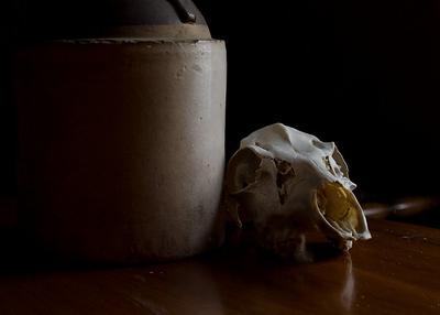 damredhead - jug and skull