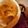 adbsgicom -- Ram's Horn