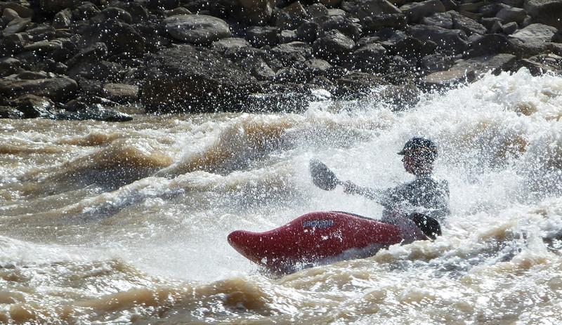 senorjax - surfin'