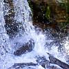 marantophotography- Free fall