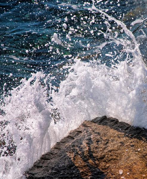 Woodsman - Mighty Pacific Meets Breakwater