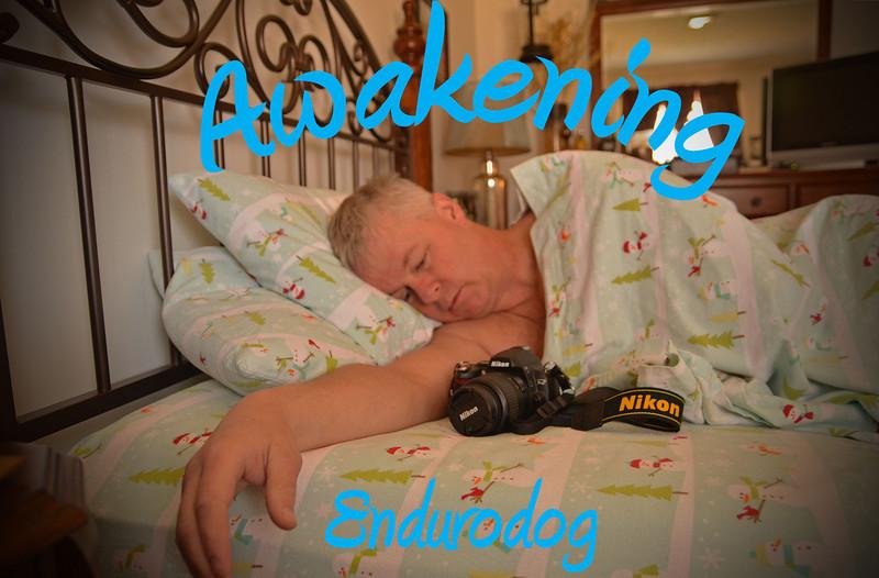 Endurodog - Awakening