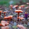 """Johnloguk - In a World of Their Own<br /> <br /> exifs here;<br />  <a href=""""http://johnloguk.smugmug.com/Photography/DGRIN-MEGA-ESCAPE/24342376_t79Z96#!i=1983240064"""">http://johnloguk.smugmug.com/Photography/DGRIN-MEGA-ESCAPE/24342376_t79Z96#!i=1983240064</a>"""