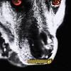 "Chandlerja - Doggy Horror<br /> Exifs = <a href=""http://smu.gs/IqbZBi"">http://smu.gs/IqbZBi</a>"