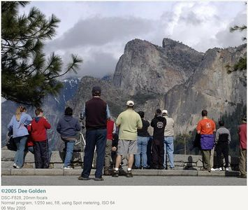 Dee Golden --  Tourists at Tunnel View