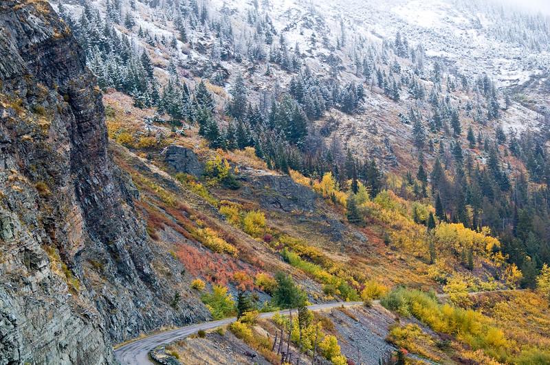 greenpea - Winter meets Autumn