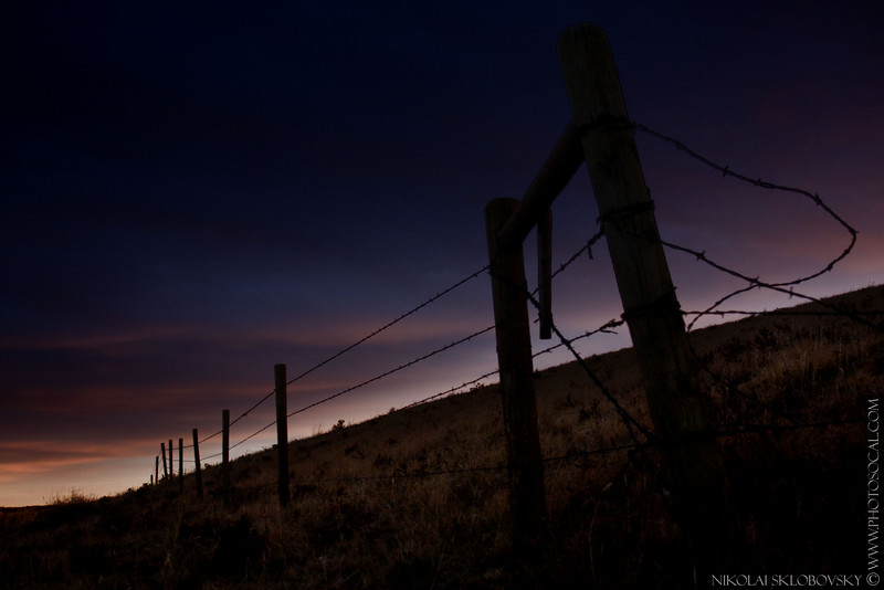 """Nikolai - """"Barbed Wire Fence"""""""