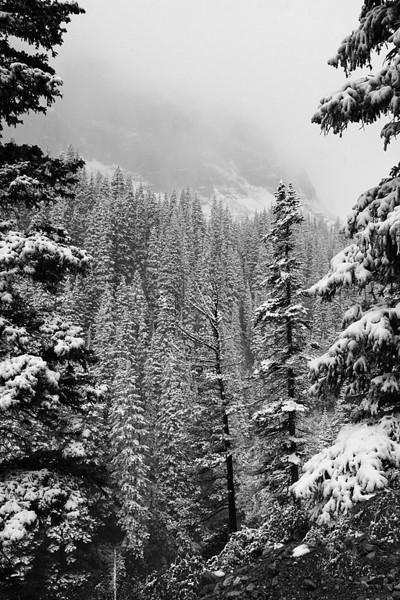 katev - Snow