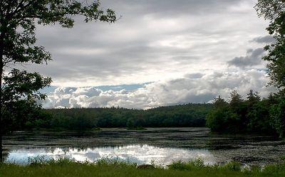Photo by Lynn Human.  Harvard Pond, Athol Massachusetts USA. 6/18/2005 17:00 hours 1/500 F11 ISO 200 24-70mm lens