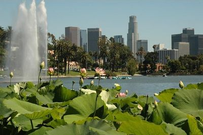 Photo by Angelo Pacella.  Los Angeles, 2pm June 18th.  Looking southwest from Echo Park Lake towards Downtown.