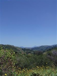 From Gary Goldstein: Looking South into Topanga Canyon - typical SoCal sky 2:08 PM PDT