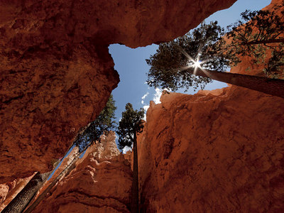 Bryce Canyon, 2006. David Rosenthal.