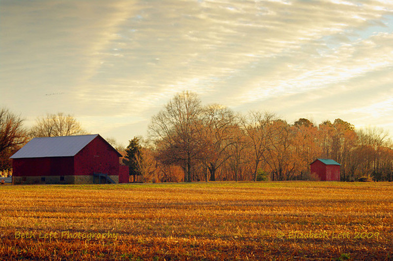 Red Barn at Sunrise  MU