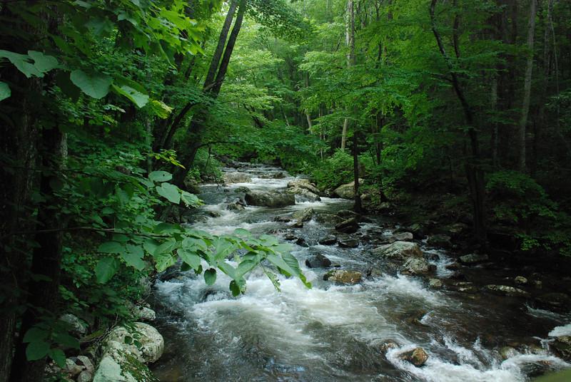 froller<br /> <br /> Little Stoney Creek<br /> Jefferson National Forest