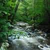 froller<br /> <br /> Little Stoney Creek<br /> Jefferson National Forest