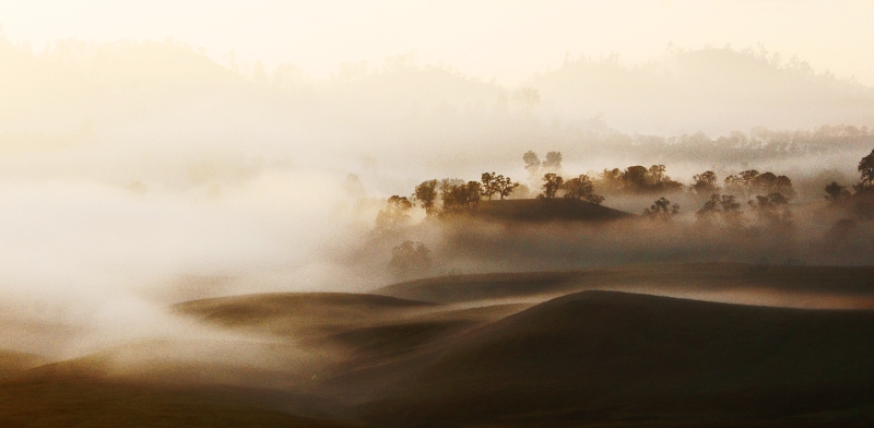 My name is Ernie, Dgrin user name, egiesker. Photo title is, Valley Fog <br /> 3. Thanks for doing this!