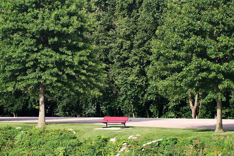 "ziggy53<br /> <br /> ""Park Bench"""