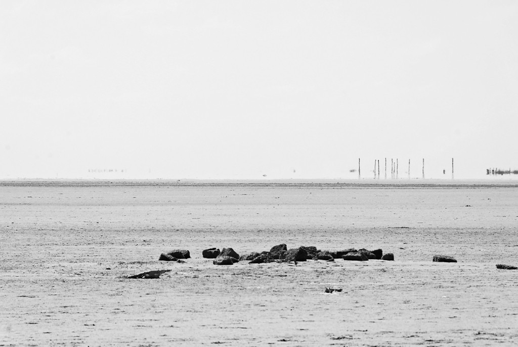 Photographer:  Sfau  Title:  Rameswaram Island