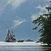 arcticblooms<br /> galena bay