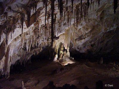 Carlesbad Caverns