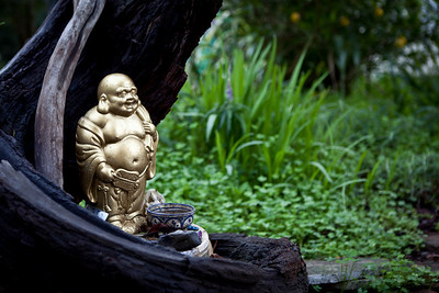 Stump Buddha at LMB.