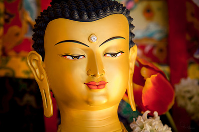Beautiful face of Shakyamuni Buddha at Ananda.