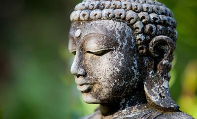 Garden Buddha at Vajrapani.