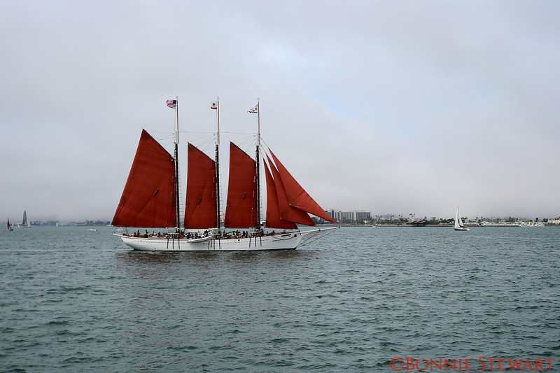 Old Sailing Ship, San Diego Harbor