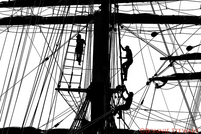 Climbing the masts in order to let down the sails.  There were 75 people climbing the masts in order to get into position to let the sails down.