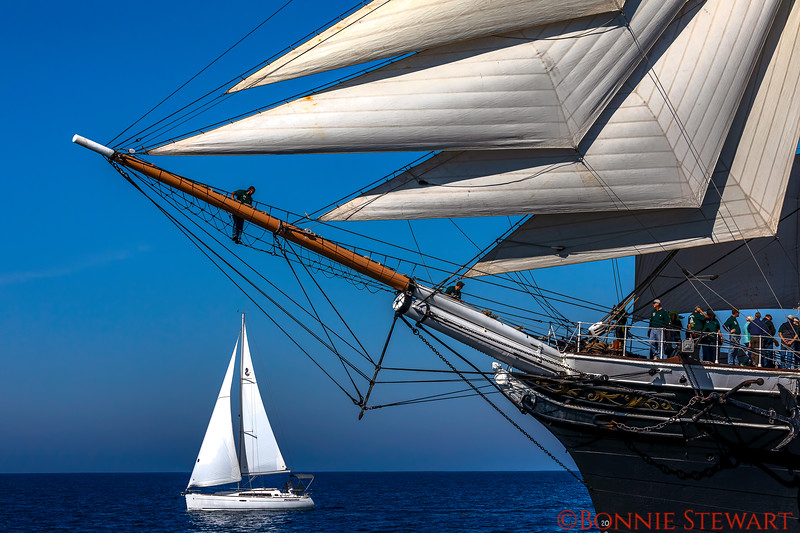 Bow of the Star of India with a sail boat nearby that emphasizes the large size of the Star!