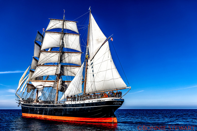 November 2018 marked the 155 Year Celebration of the Star of India.  After major renovations it is the first time the ship sailed in five years!
