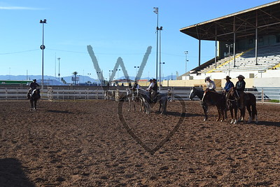 2014 Stock Show & Ranch Ropings