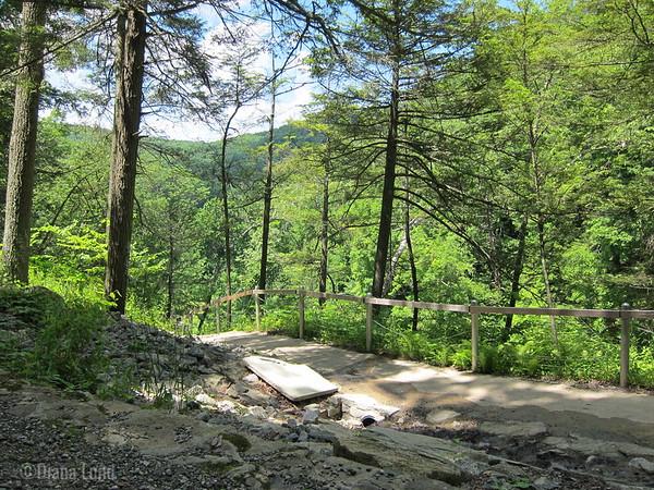 View halfway up Kent Falls.