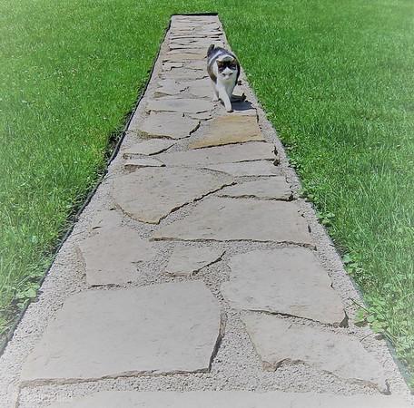 Ember's walkway