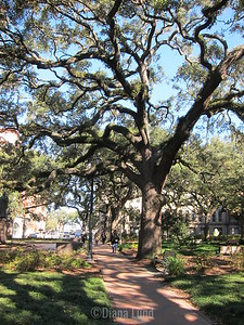 first full day went to Savannah