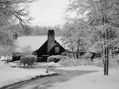 Lake Ellyn Winter