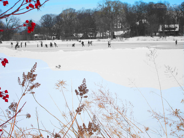 Ice skating on Lake Ellyn one cold day, at least above zero.