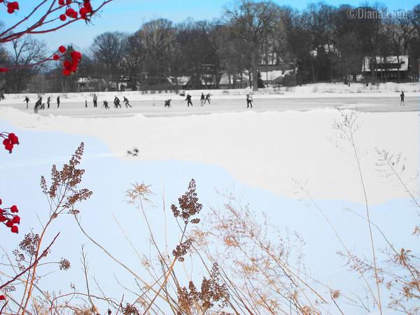 Lake Ellyn Winter Ice Skating