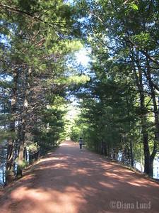 lake on both sides of bike path
