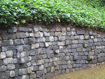 Japanese Garden in Portland IMG_4424.JPG