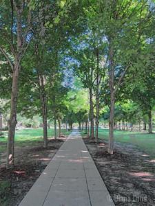 Notre Dame University img_5218.JPG